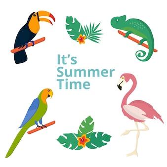 Éléments graphiques tropicaux de l'été