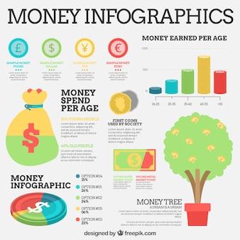 Éléments infographiques d'argent avec des graphiques