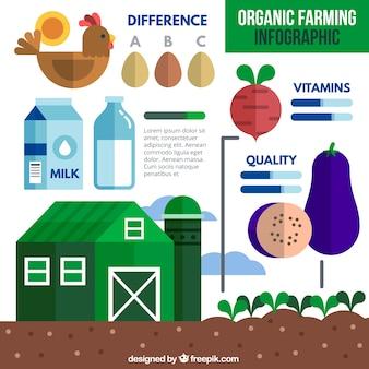 Éléments organiques infographic en design plat