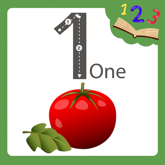 Éléments de tomate à un numéro