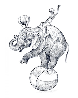 Éléphant de cirque. animal sauvage d'afrique sur le ballon. spectacle au zoo. croquis gravé dessiné à la main dans un style vintage.