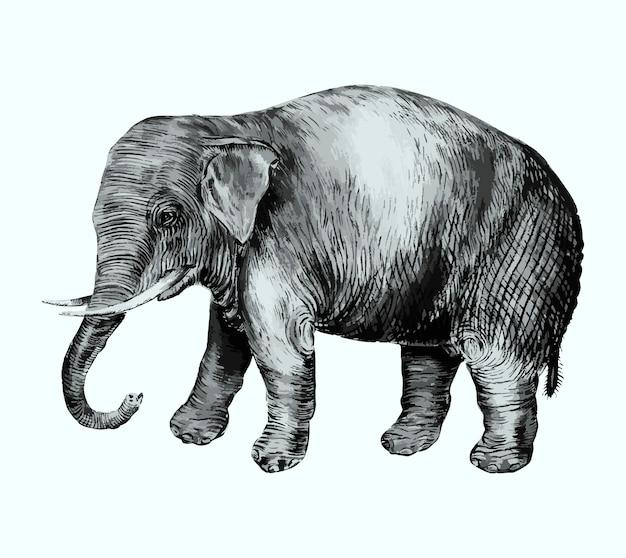 Éléphant dans le style vintage
