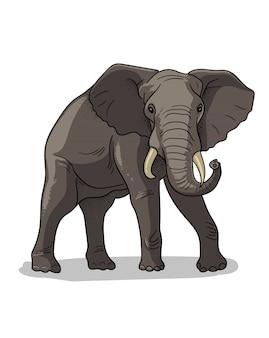 Éléphant debout de savane africaine isolé en style cartoon. illustration de zoologie éducative, image de livre de coloriage.