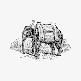Éléphant indien et cornac