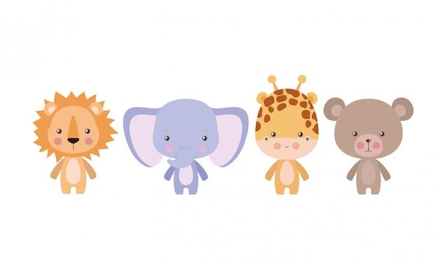 Éléphant lion girafe et ours dessin animé