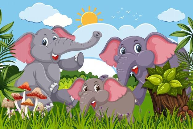 Éléphants dans la scène de la nature