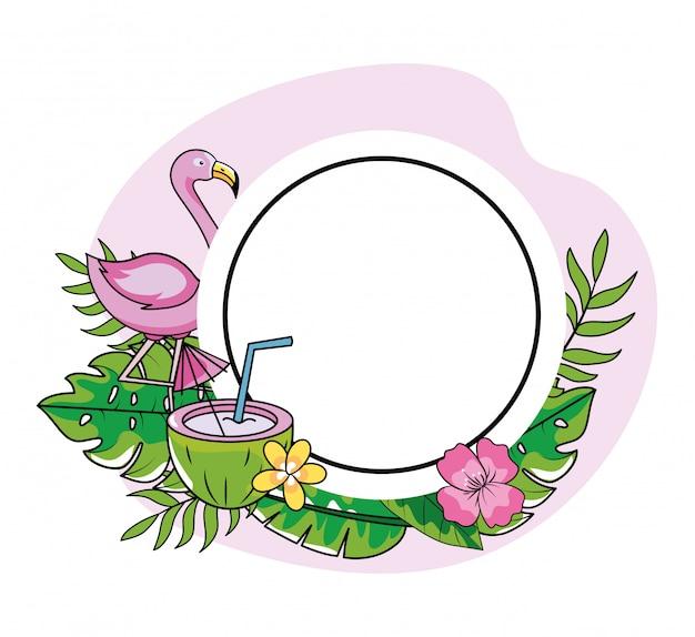 Emblème de cercle avec flamand et noix de coco avec des fleurs