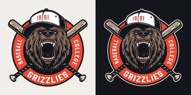 Emblème coloré vintage de la ligue de baseball