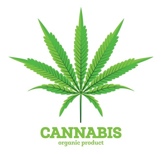 Emblème de feuille de cannabis ou de marijuana isolé sur blanc. illustration vectorielle. produit biologique.