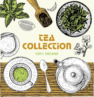 Emblème de magasin de thé, bannière avec des feuilles de thé dessinées à la main. illustration vectorielle de thé croquis. conception de carte. affiche pour salon de thé. ensemble dessiné à la main. style gravé.