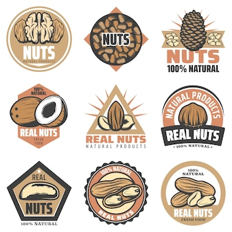 Emblèmes d'aliments biologiques colorés vintage sertis d'inscriptions et de différentes noix naturelles savoureuses isolées