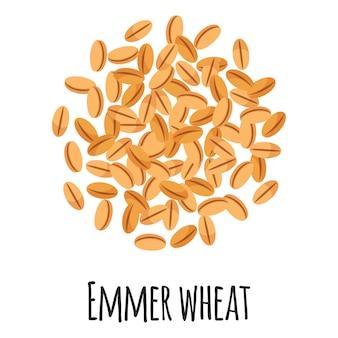 Emmer blé pour la conception, l'étiquette et l'emballage du marché fermier modèle. super aliment biologique à protéines énergétiques naturelles.