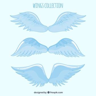Ensemble d'ailes dessinées à la main céleste