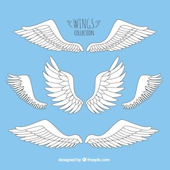 Ensemble d'ailes dessinées à la main