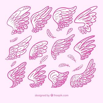 Ensemble d'ailes roses dessinées à la main