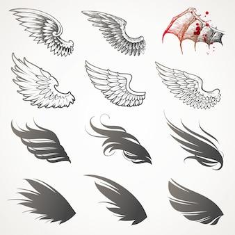 Ensemble d'ailes.