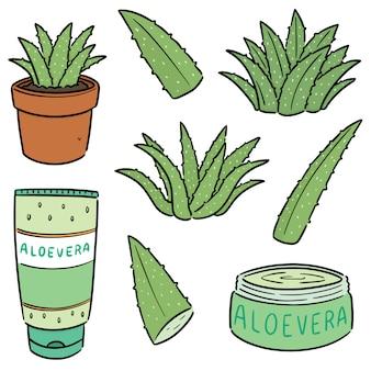 Ensemble d'aloe vera et produit d'aloe vera