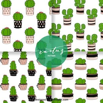 Ensemble amusant de motifs de cactus dessinés à la main