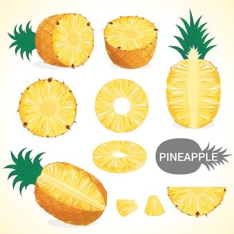 Ensemble d'ananas au format vectoriel de différents styles