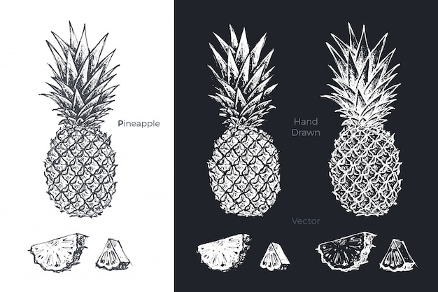 Ensemble d'ananas dessiné à la main