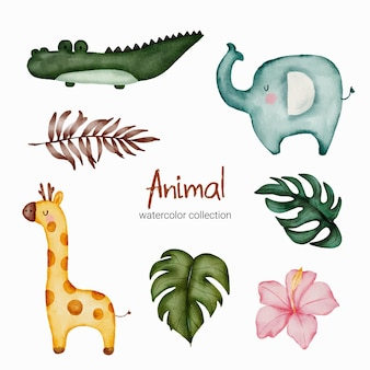 Ensemble d'animaux aquarelle