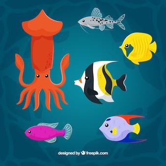 Ensemble d'animaux aquatiques colorés dans différentes espèces