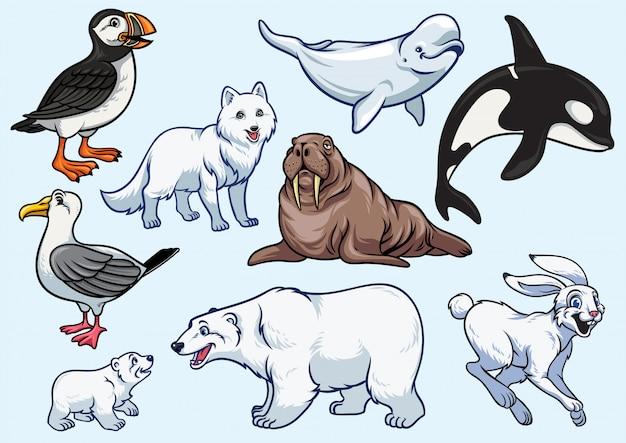 Ensemble d'animaux arctiques