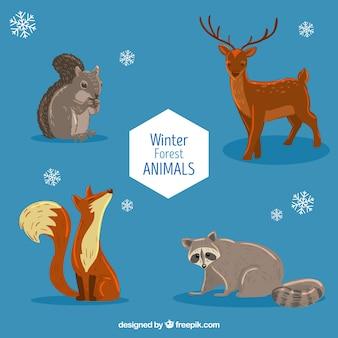 Ensemble d'animaux belle forêt