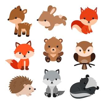 Ensemble d'animaux des bois.