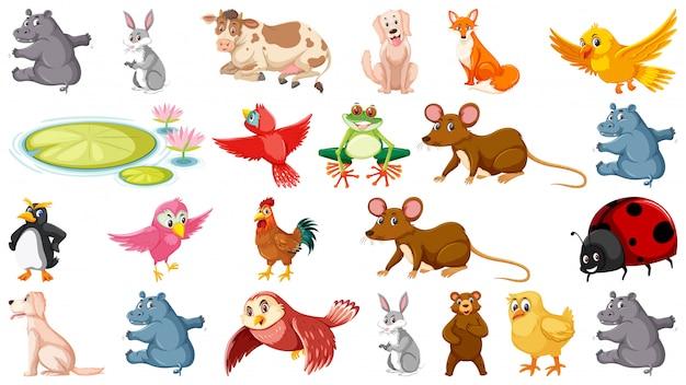 Ensemble d'animaux différents