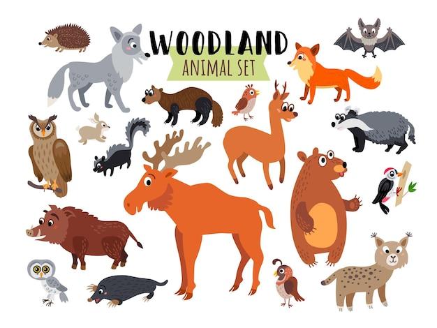 Ensemble d'animaux de la forêt des bois isolé sur blanc