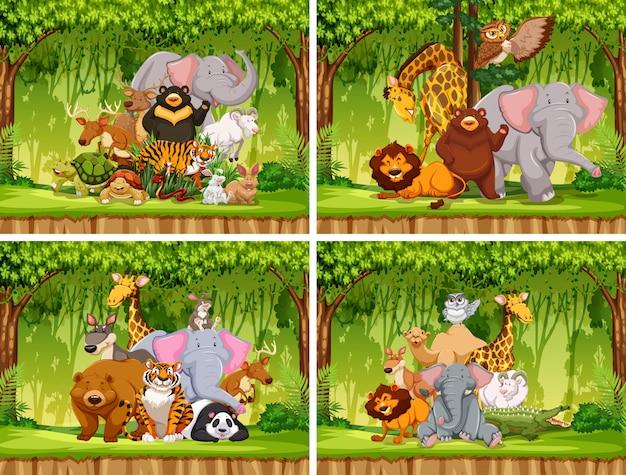 Ensemble d'animaux sauvages dans la nature