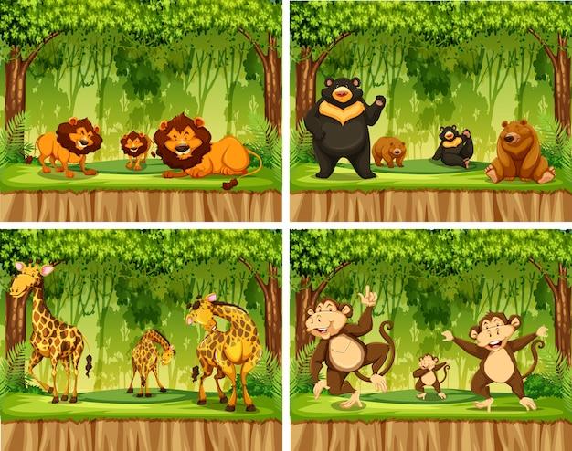 Ensemble d'animaux sauvages en forêt