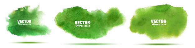 Ensemble aquarelle dessiné main abstraite verte.