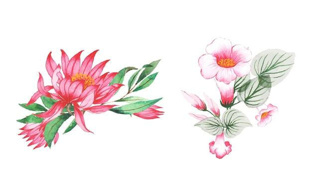 Ensemble, de, aquarelle, fleur, et, feuille