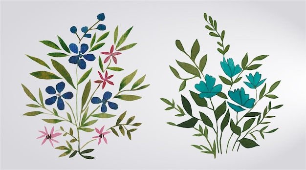 Ensemble d'aquarelle et de fleurs et de feuilles