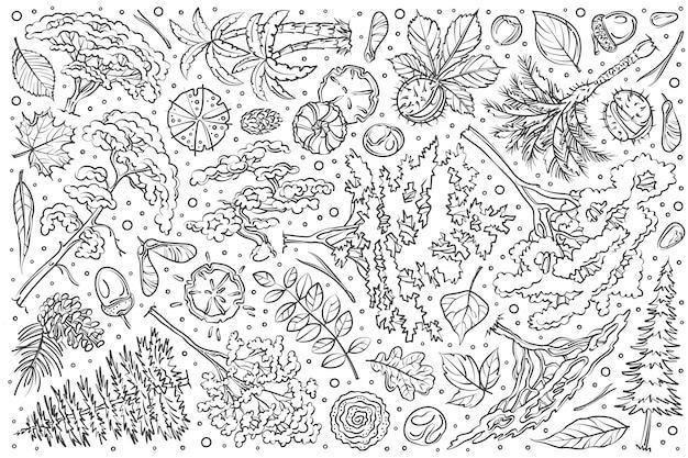 Ensemble d'arbres dessinés à la main doodle
