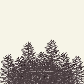 Ensemble d'arbres evegreen forêt naturelle