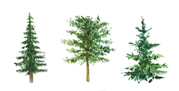 Ensemble d'arbres à feuilles persistantes peintes à l'aquarelle à la main.
