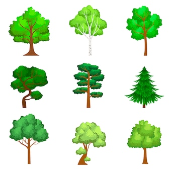 Ensemble d'arbres réalistes