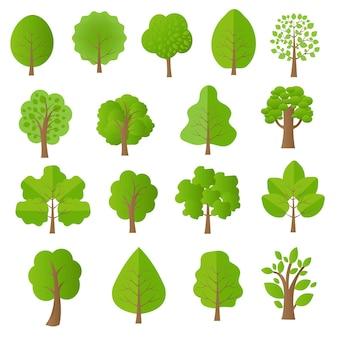 Ensemble d'arbres verts isolé sur fond blanc