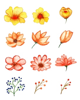 Ensemble d'art floral aquarelle à la main