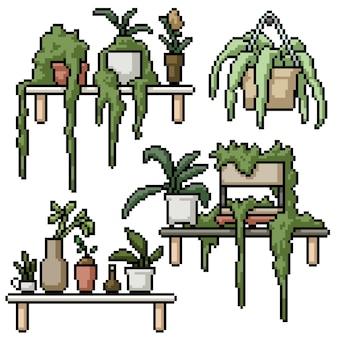 Ensemble d'art pixel de décoration d'étagère plante isolée