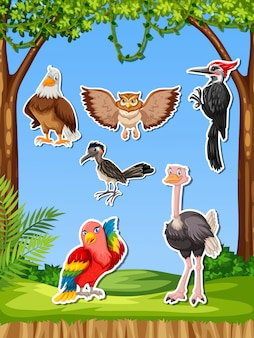 Ensemble d'autocollant oiseau différent