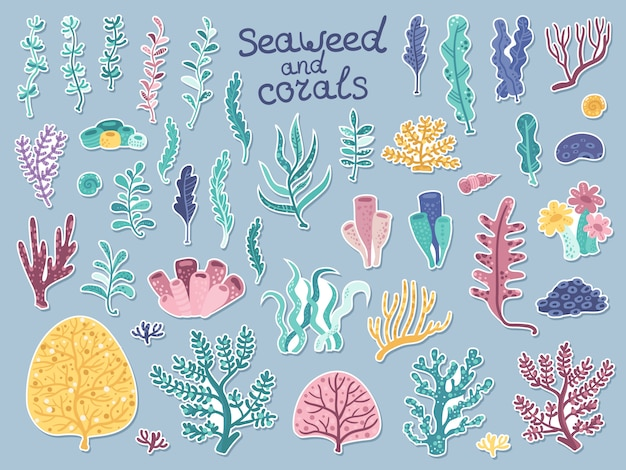 Ensemble d'autocollants avec des algues et des coraux