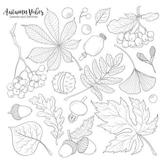 Ensemble de baies et de feuilles d'automne tombant automne dessinés à la main noir et blanc