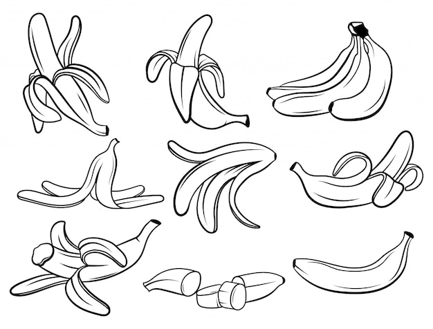 Ensemble de bananes. collection de fruits frais en vitamines. fruits juteux. dessin pour enfants.
