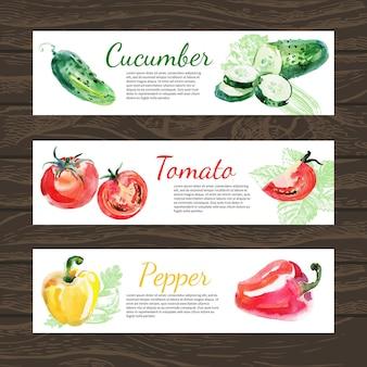 Ensemble de bannière horizontale d'aliments biologiques à l'aquarelle et à l'esquisse. concevoir avec du concombre, de la tomate et des poivrons. illustration vectorielle