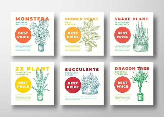 Ensemble de bannière de plantes d'intérieur