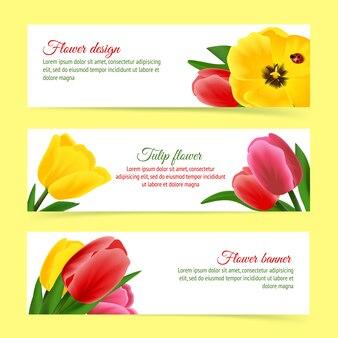 Ensemble de bannière de tulipe